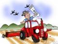 一号文件:强调加强农业知识产权保护 ()
