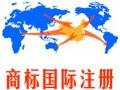 """商标国际注册让铁观音有了""""国际范"""" ()"""